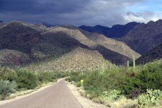 Tucson Mountains-Ellen Perlman