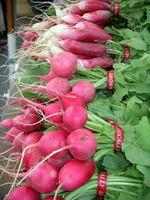 Radishes3, DC farmers market-Ellen Perlman