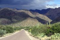 Tucson Mountains-Ellen Perlman