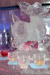 Ice glasses and sculpture-Ellen Perlman