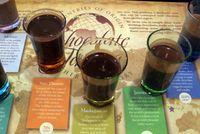 Hot cocoa tasting, Hershey-Ellen Perlman (770 x 514)