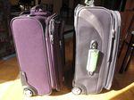 Suitcase comparison2-Ellen Perlman