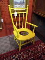 IMG_1006-Yellow potty chair, PA-Ellen Perlman