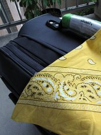 Suitcase, bandana-Ellen Perlman