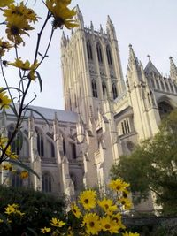 National Cathedral with flowers