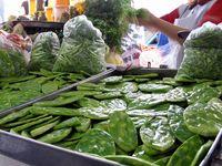 Corona Market, Guadalajara, Mexico, boldlygosolo