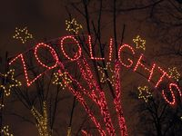 Zoo lights 2012, National Zoo, DC, boldlygosolo
