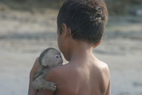 Boy_with_monkey_sacha_lodge