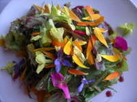 Salad_at_sooke_harbour_house_vancou
