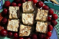 Torrone_and_cranberries2ellen_perlm